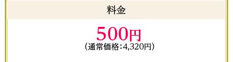 料金:500円(通常価格:4,320円)